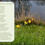 Woensdagmeditatie: De Heer is mijn Zorger