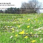 Woensdagmeditatie: Met Pasen in de rug (5)