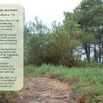 Woensdagmeditatie: Onze hoop, onze herder