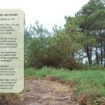 Mail voor de Geest - Onze hoop, onze herder